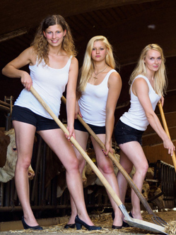 德国农场女性拍摄日历 齐秀大长腿