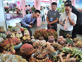昆明国际花卉展开幕