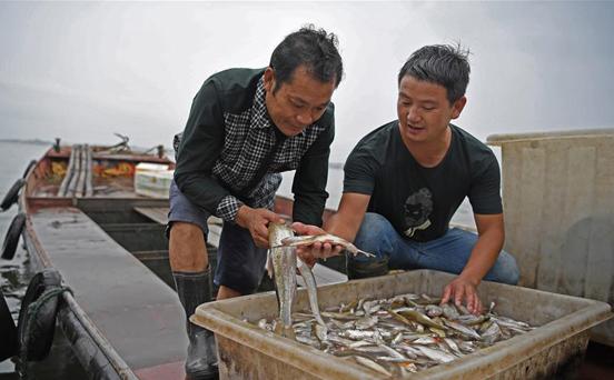 鄱阳湖渔民上岸记[组图]