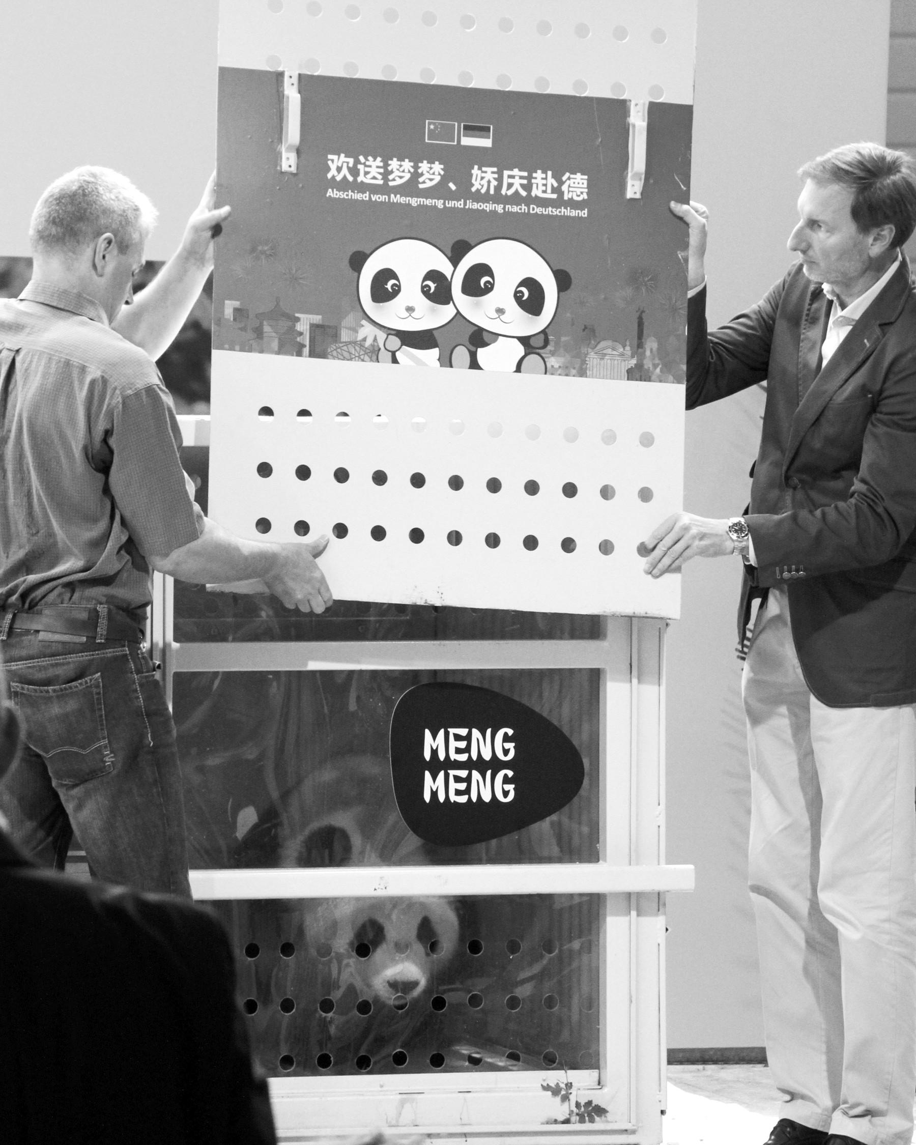 """峰会前夕抵达柏林 """"熊猫外交""""再被热议"""