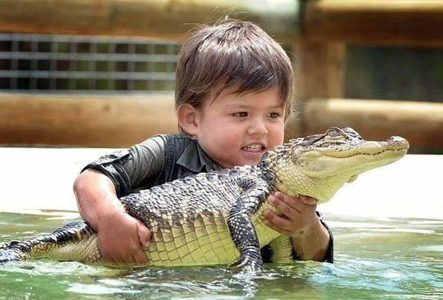 宝宝和动物在一起太甜了!图片