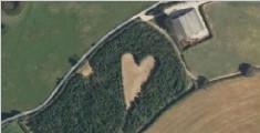 """从云端望见的""""心"""" 农夫种6000棵树纪念亡妻"""