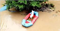 洪水来袭主人把皮划艇让给猪坐 二师兄面带微笑