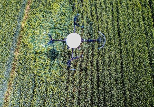 无人机喷洒农药有4大好处 果树场开始飞防植保