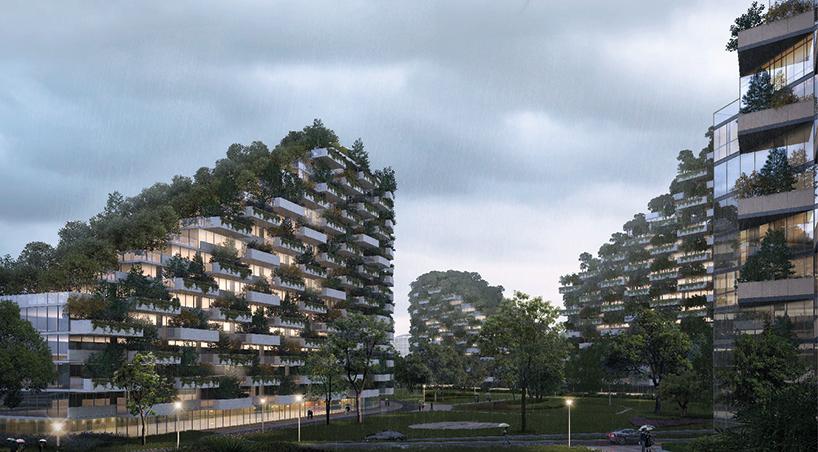 """柳州将建""""垂直森林城"""" 三年完工近百万植物"""