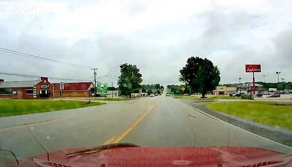 惊魂一幕:美国司机开车时遇蛇爬上挡风玻璃