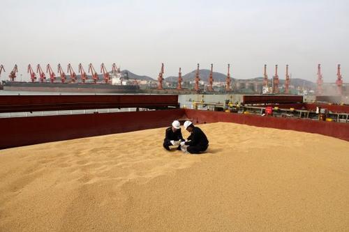 英媒:中国人多吃肉美国人多产豆?中国胃促美国经济