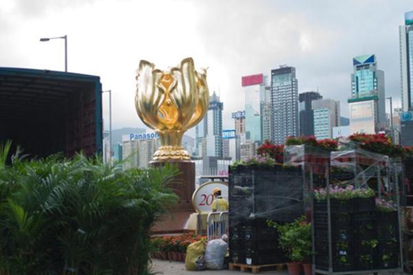 香港庆祝回归20周年 金紫荆广场布置鲜花