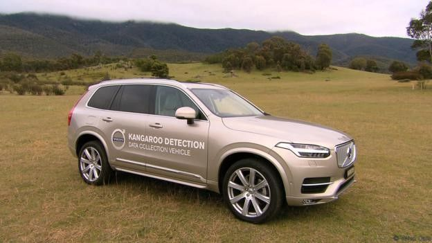 沃尔沃自动驾驶汽车澳洲遭遇难题 难识别袋鼠