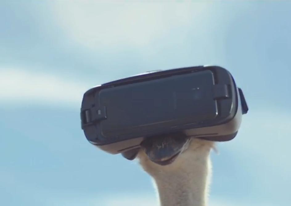 科技雷不撕:三星VR广告鸵鸟篇获戛纳2017三项金奖