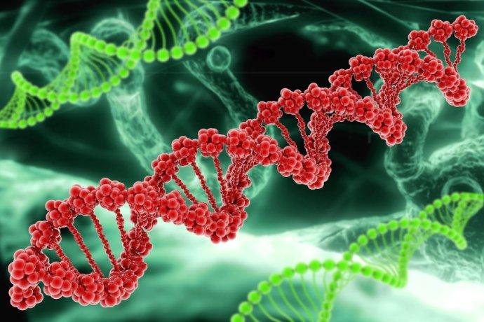 乐金健康参股公司发布科研级人类iPSC
