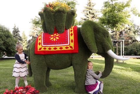 莫斯科国际花展 精美花雕引民众驻足