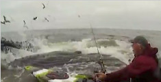 当皮划艇遇上座头鲸 他把船开到了鲸鱼背上!
