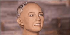 美女机器人要毁灭人类