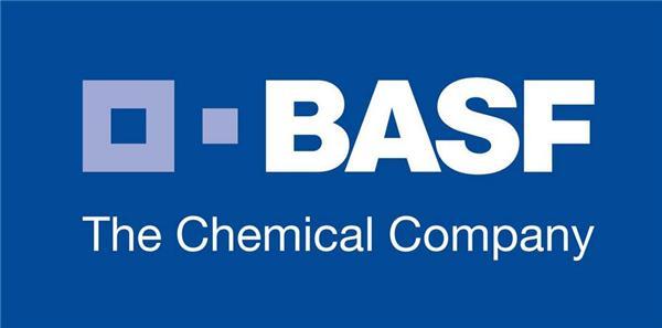 巴斯夫向新宙邦出售电池电解质生产厂