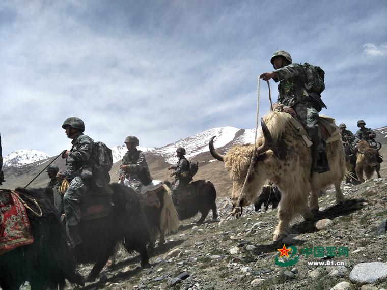 全军唯一一条只能骑牦牛执勤的巡逻线在这里!