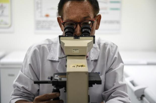 科学家发现皮肤癌扩散蛋白 或有望治疗癌症