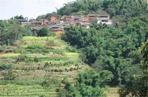 玉溪元江二掌村:一个散发茶香的古村落