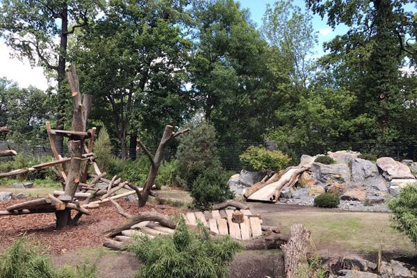 柏林动物园熊猫馆紧锣密鼓筹备 将迎接7月5日开馆仪式