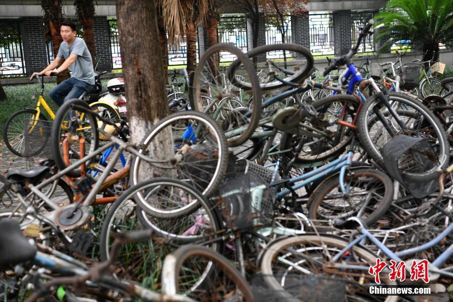 大量废弃自行车遗留成都校园