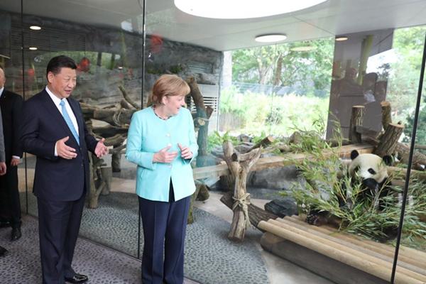 习近平同德国总理默克尔共同出席柏林动物园大熊猫馆开馆