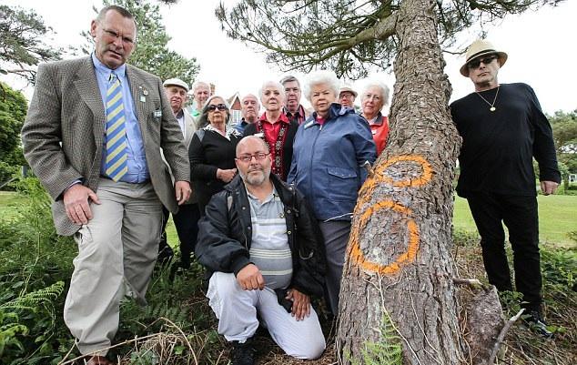 英男子破坏邻居树木只因妨碍其观景 被罚近80万元