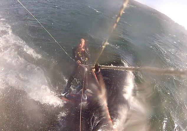 惊险!美风筝冲浪者撞上座头鲸 所幸并未受伤