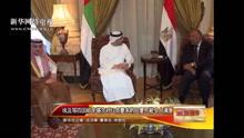 埃及等四国声明:卡方回复不令人满意.