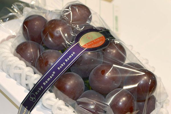 日本葡萄卖出111万日元天价 创历史新高