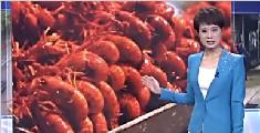吃货为口腹之欲深夜行窃 偷80斤小龙虾全吃完