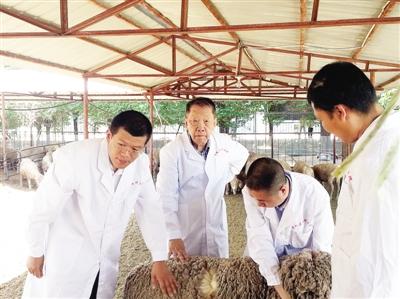 """刘守仁:献身边疆60年 一生只为""""一只羊"""""""
