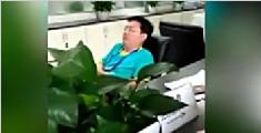 一公职人员上班睡觉不理办事群众 被停职调离