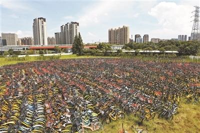 杭州拟暂停新增共享单车
