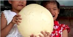 3斤重的巨型馒头 网友:脸终于比馒头小了