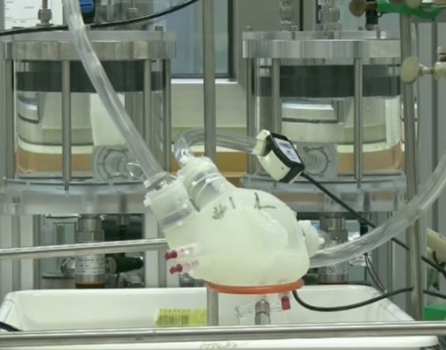 科技雷不撕:3D打印心脏像真正心脏一样工作