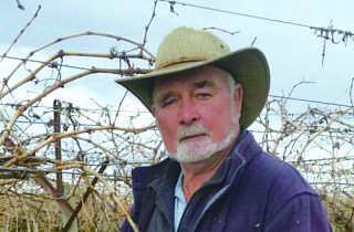 维省葡葡农场主史密斯说,有中国水果商到他的水果场和邻近水果场,提出要以现金买仍在葡萄藤 的鲜食葡萄。