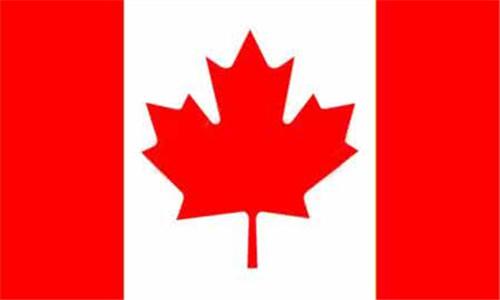 加拿大特快入境计划致力吸IT专才 配合经济发展