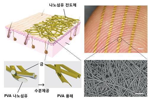 韩研发会呼吸的电子皮肤 可监控各项健康指数