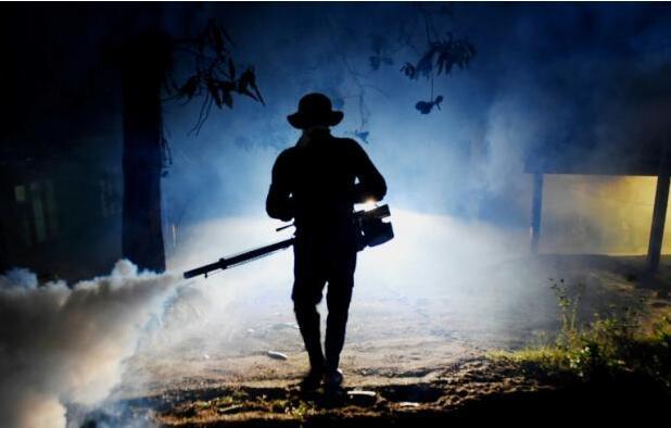 斯里兰卡登革热肆虐致250人死亡 澳洲协助防治