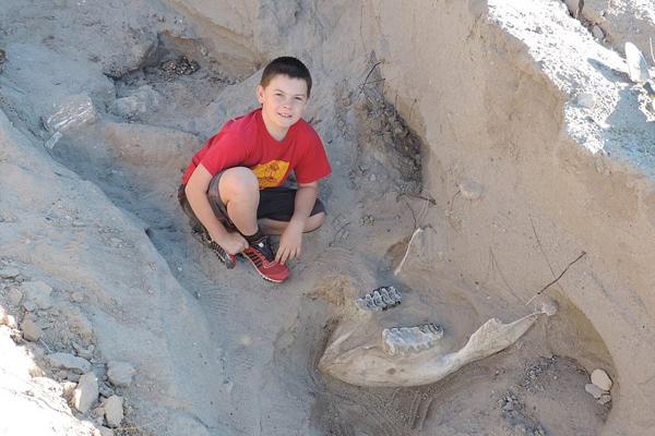 美10岁男童与家人徒步旅行意外发现史前化石