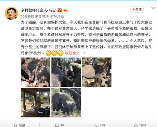 """有一头远在非洲的大象 马云将它命名为""""杭州"""""""