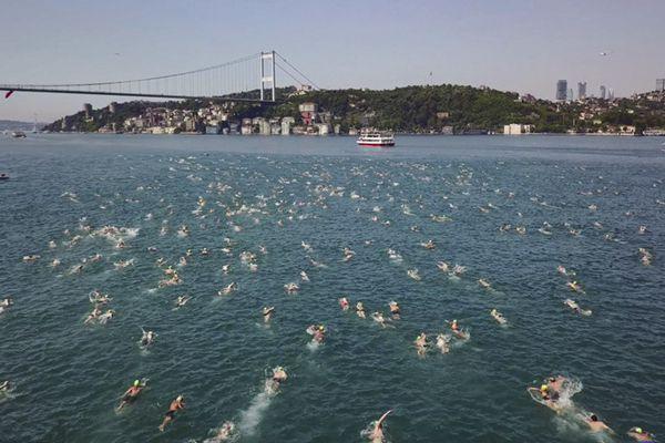 跨欧亚大陆!2000多人横渡博斯普鲁斯海峡游泳比赛