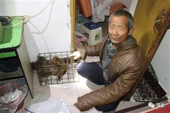 非遗耍猴艺人买卖猕猴被抓 协会会长:办证太麻烦
