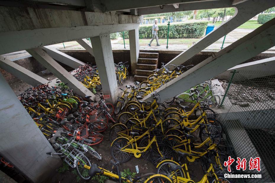太原近百辆共享单车被锁桥下