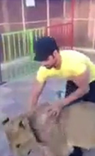 沙特母狮遭男子殴打虐待 画面残忍引民愤