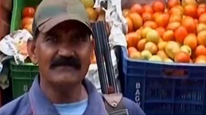 印度西红柿价格疯涨 菜场派兵持枪保卫
