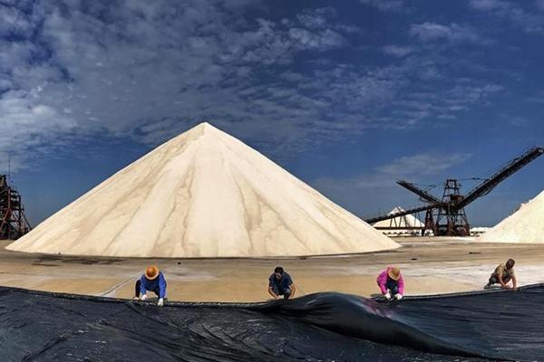 河北唐山:春盐丰收货满仓