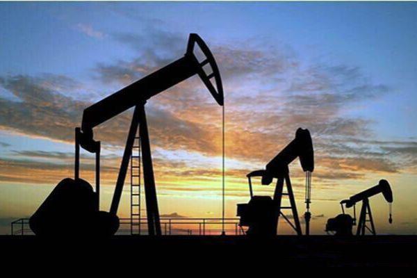 壳牌CEO:电动汽车不可怕 原油需求短期不会见顶
