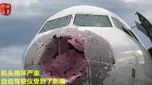 客机高空遇冰雹 机长成功全盲降落获总统贺电