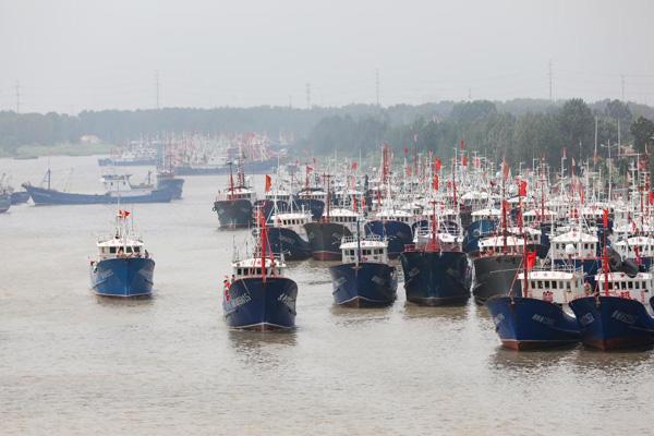 江苏连云港:黄渤海东海海域开渔千帆出港场面壮观